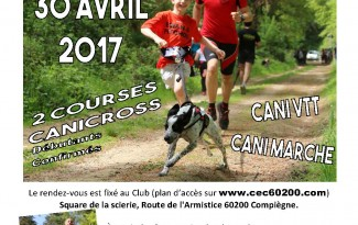 affiche canicross
